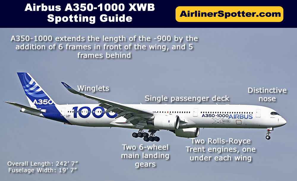 Airbus A350-1000 spotting highlights, including a twin-engine configuration, a single passenger deck, a distinctive nose and winglets, and two 6-wheel main landing gears