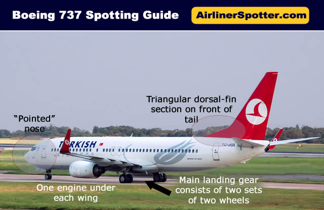 "The Boeing 737 has two engines, a main landing gear consisting of two sets of two wheels, and a triangular section at the front of the tail. The nose is ""pointed"""